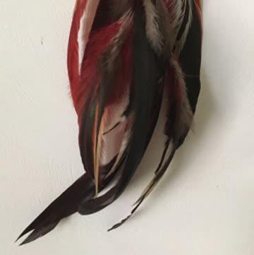 Federohrring rot handgemacht