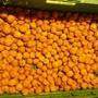 1 Kg Baumnüsse