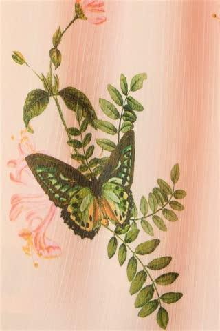 Bluse von H&M Mama hellrosa mit Schmetterlinge