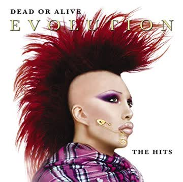 Dead or Alive - Dead or Alive Evolution The Hits