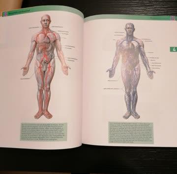 Bilderatlas des Mensch. Körper