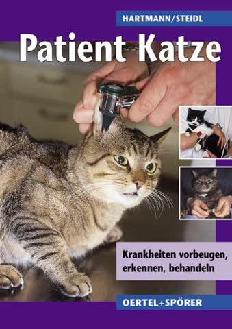 Patient Katze