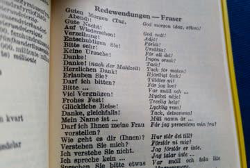 Langenscheidts Schwedisch-Deutsch-Schwedisch