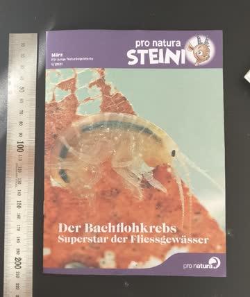 Pro Natura 'Steini' - März (1/2021)