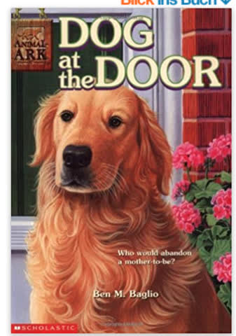Dog at the Door (Animal Ark)