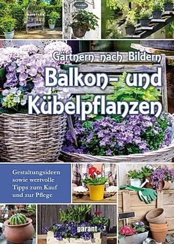 Gärtnern nach Bildern - Balkon- und Kübelpflanzen