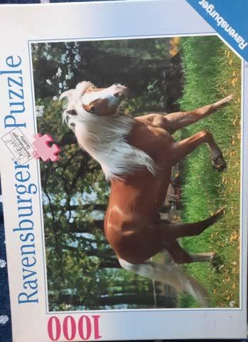 Pferde Puzzle 1000 Teile