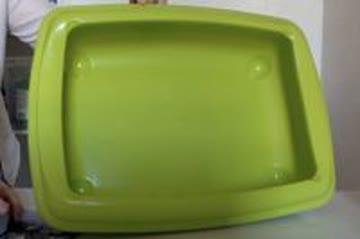 Katzenklo grün
