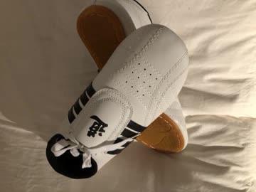 TKD (TaeKwonDo) Sneakers