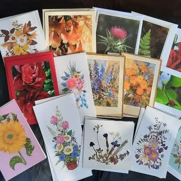 15 Stk Karten