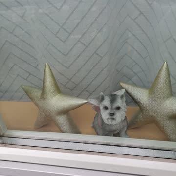 2 Dekorations Sterne wie neu
