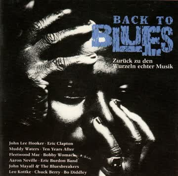 Back to Blues - Back to Blues - Zurück zu den Wurzeln
