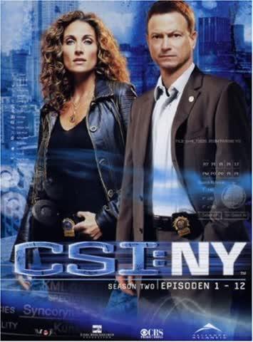 CSI: NY - Staffel 2.1