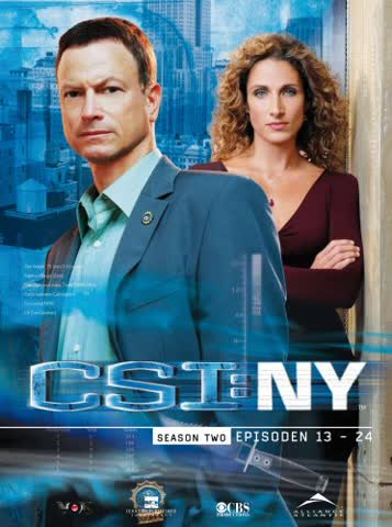 CSI: NY - Season 2.2 [3 DVDs]