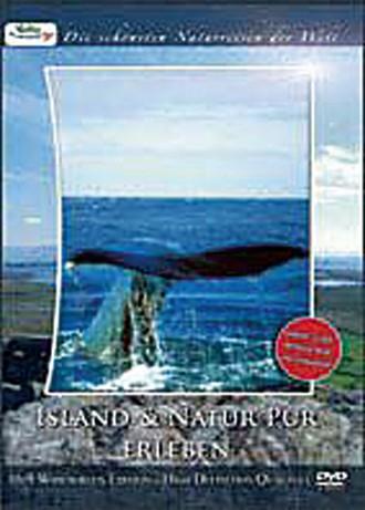 Island Und Natur Pur Erleben