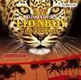 Lionboy 3. Die Wahrheit