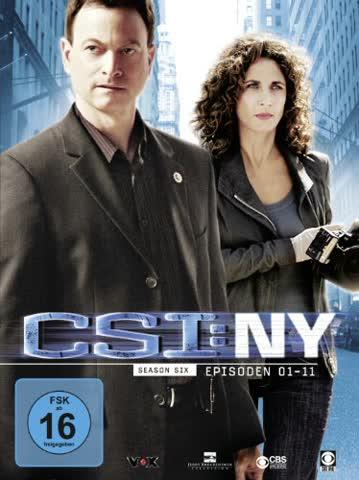 CSI: NY - Season 6.1 [3 DVDs]