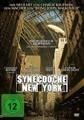 Synecdoche New York (DVD)