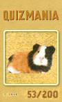 Quizmania - 053 - Meerschweinchen Quizkarte