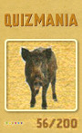 Quizmania - 056 - Wildschwein Quizkarte