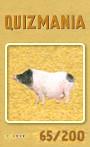 Quizmania - 065 - Hängebauchschwein Quizkarte