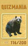 Quizmania - 116 - Braunbär Quizkarte