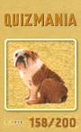 Quizmania - 158 - Boxerhund Quizkarte