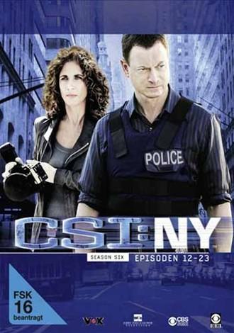 CSI: NY - Staffel 6.2