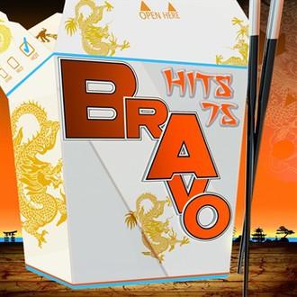 Sampler - Sampler - Bravo Hits 75