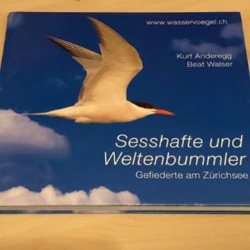 Sesshafte und Weltenbummler: Gefiederte am Zürichsee.
