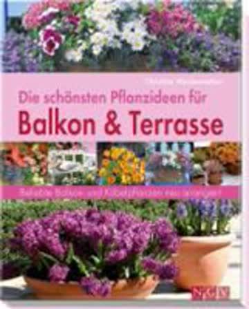 Die schönsten Pflanzideen für Balkon- & Kübelpflanzen: Beliebte Balkon- und Kübelpflanzen neu arrangiert
