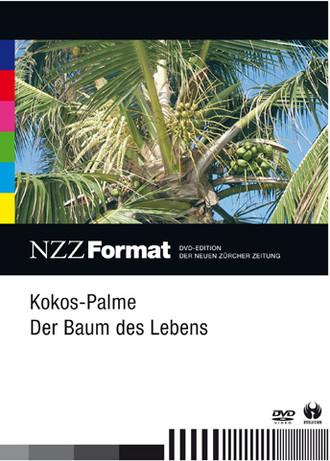 Kokos-Palme - Der Baum Des Lebens