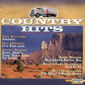 Various Artists - Country Hits - The World Of Country Music