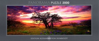 Oak Tree - Humboldt - Puzzle