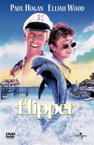 DVD Flipper