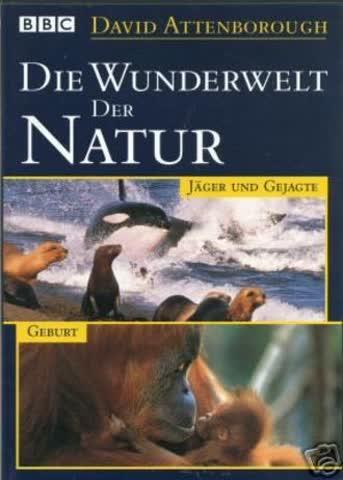 Die Wunderwelt der Natur - Jäger und Gejagte, Geburt