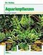 Ihr Hobby: Aquarienpflanzen