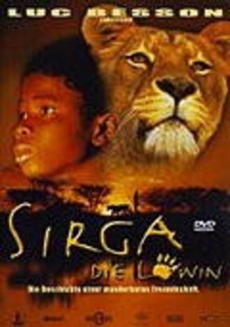Sirga die Löwin