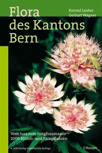 Flora des Kantons Bern: Vom Jura zum Jungfraumassiv - 2000 Blüten- und Farnpflanzen