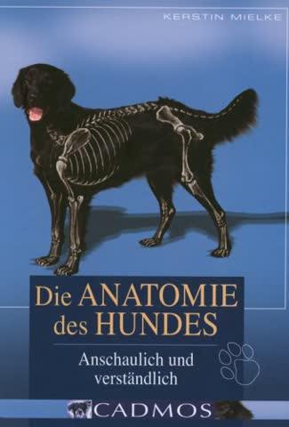 Die Anatomie des Hundes: Anschaulich und verständlich (Cadmos Hundebuch)
