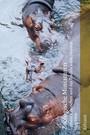 Zoologische Miniaturen: Luthers Kaninchen und des Teufels wilde Horden