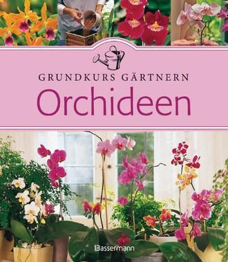 Orchideen: Grundkurs Gärtnern