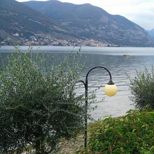 Ristorante La Terrazza Sul Lago, Ristorante, Iseo,