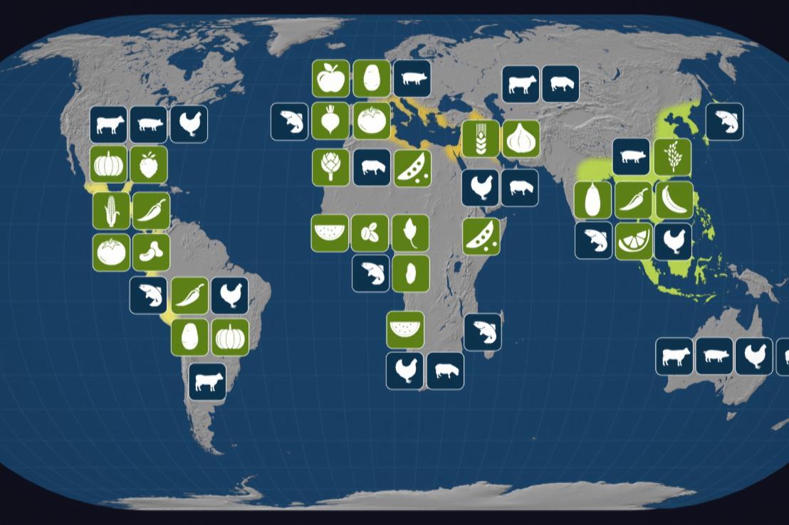 Alimentation : la mondialisation dans nos assiettes ?