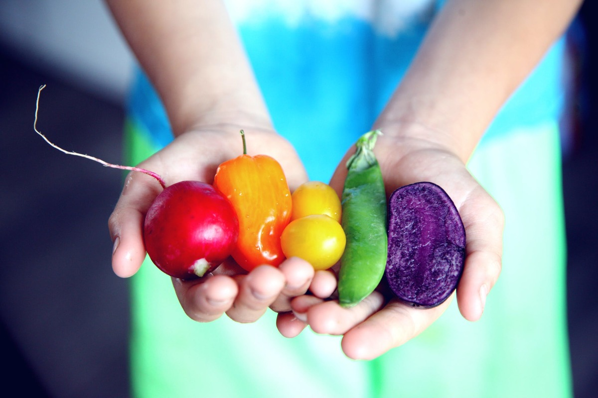 Two hands holding a variety of vegetables in a rainbow
