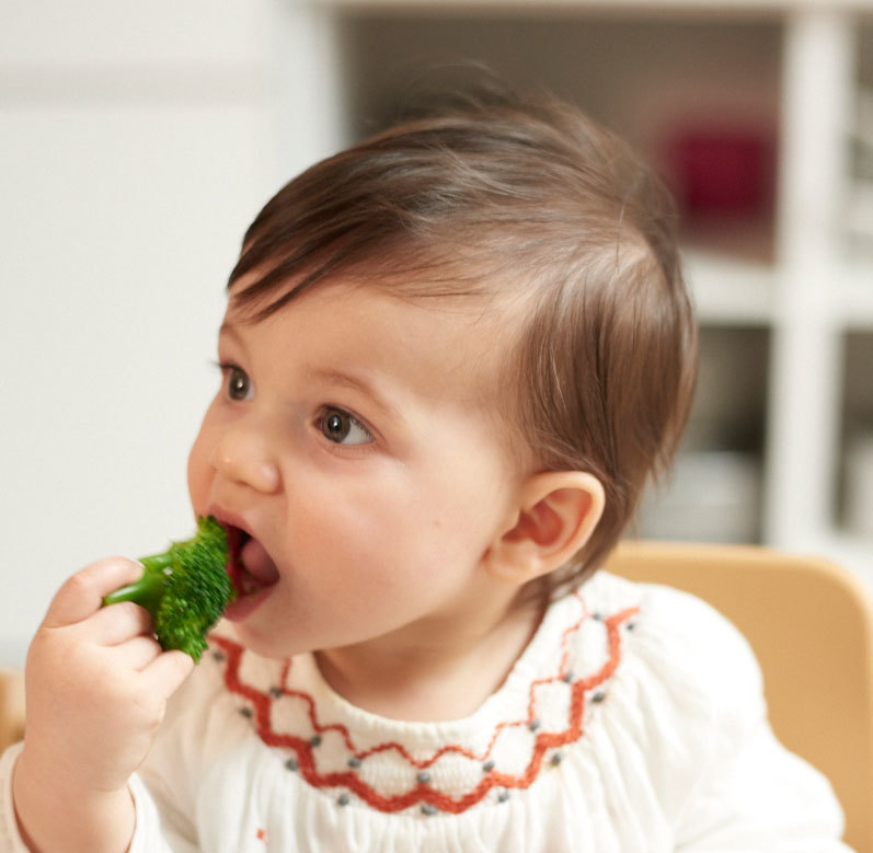 A baby eating a sprout of broccoli