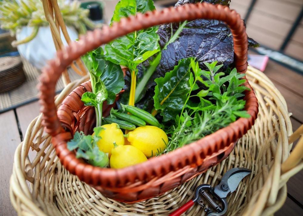 Organic fruits and vegetables in a small basket