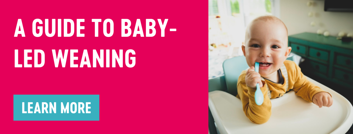 A guide to baby-led weaning Babease blog banner