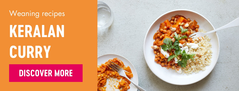 Keralan curry weaning recipe