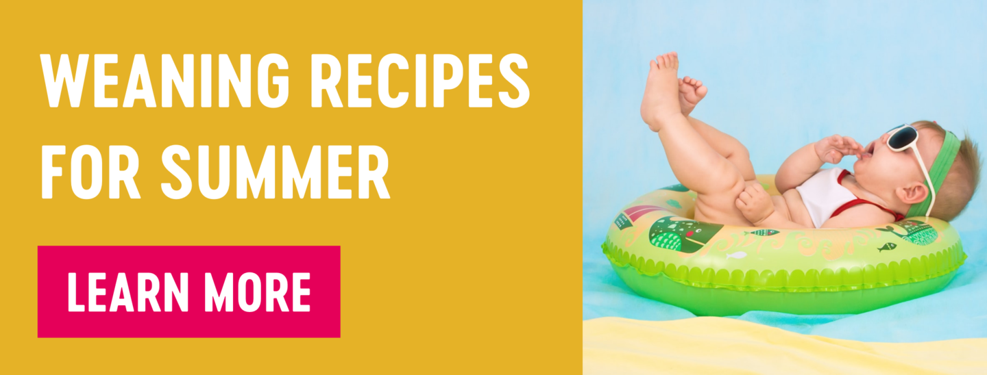 weaning recipes for summer Babease blog article